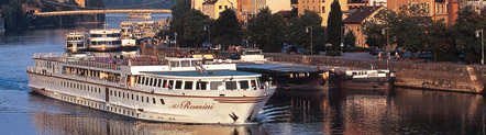 ms rossini