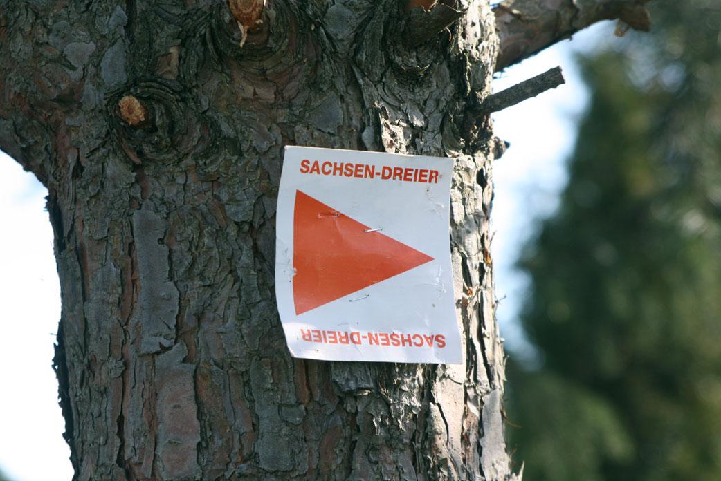 Sachsen Dreier 2016